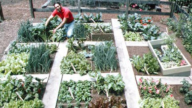 Tag Archives: Square Foot Garden